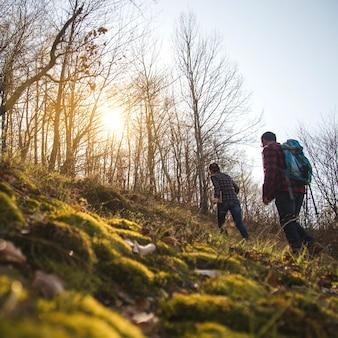 Młoda para spaceru w lesie