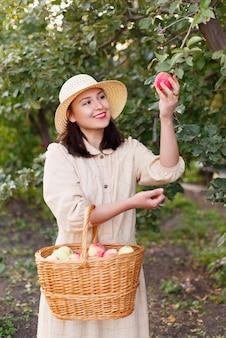 Młoda piękna kobieta z dużym koszem czerwonych jabłek ekologicznych.