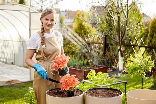 Młoda piękna ogrodniczka przeszczepia kwiaty do dużych ceramicznych wazonów w ogrodzie.