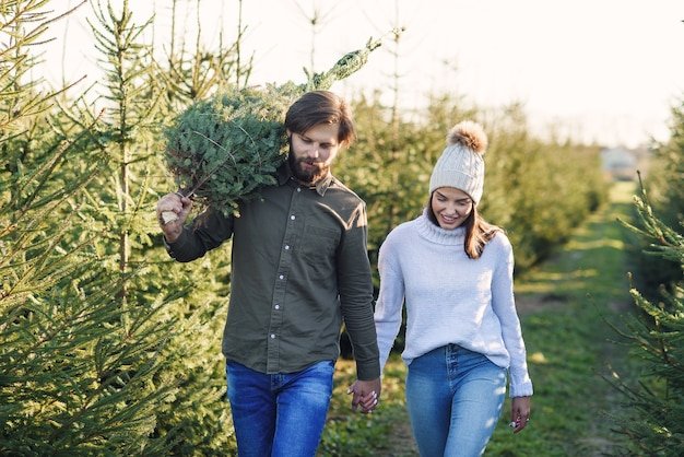 Młoda szczęśliwa para kupiła świeżą choinkę na plantacji przygotowując wakacje. wesołych ferii zimowych