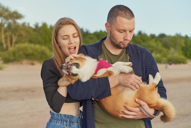 Młoda szczęśliwa para mężczyzny i kobiety z psem corgi, piękna kobieta gryzie uszy szczeniaka