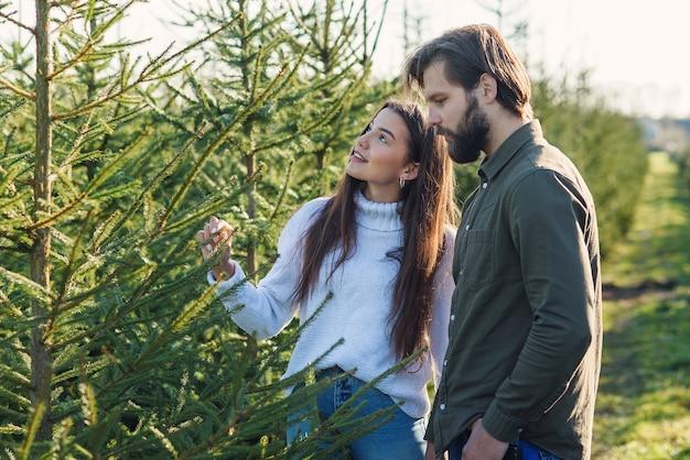 Młoda szczęśliwa rodzina wybiera choinkę na plantacji przygotowuje ferie zimowe.