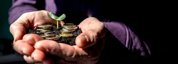 Młode kiełkują ze stosu monet. koncepcja inwestycji. roślina rośnie z pieniędzy, monet. oszczędzanie pieniędzy na rozwój biznesu i koncepcji przyszłości.