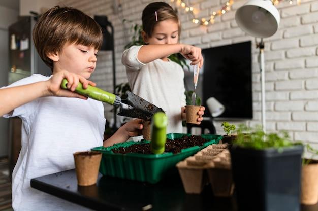 Młode rodzeństwo sadzi rośliny w domu