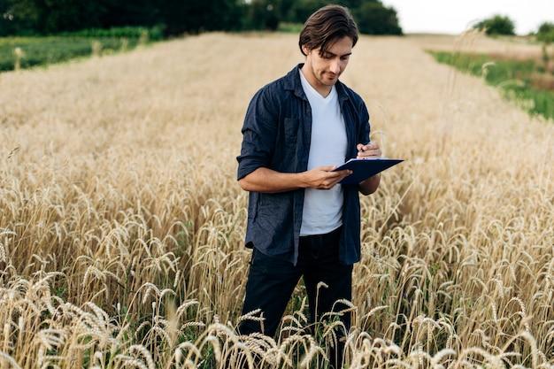 Młody agronom bada plon na polu pszenicy