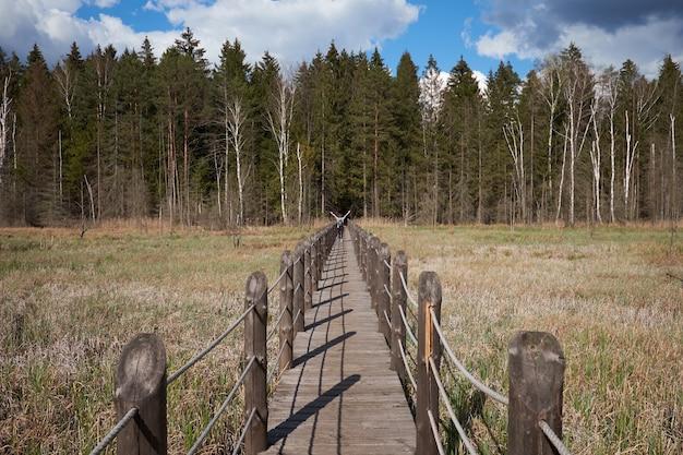 Młody aktywny podróżnik na drewnianym moście w rezerwacie przyrody