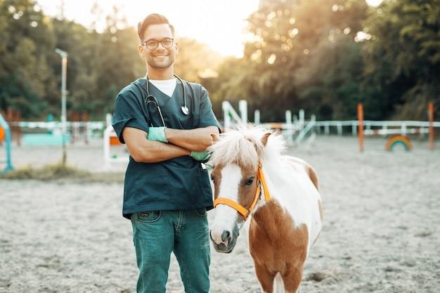 Młody atrakcyjny męski lekarz weterynarii stojący i pozujący z uroczym koniem kucyka.