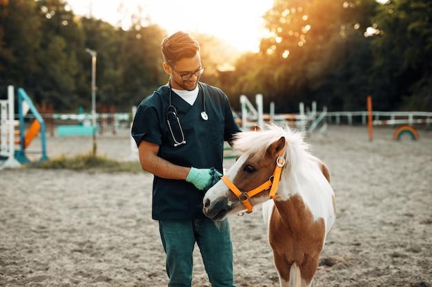 Młody atrakcyjny mężczyzna weterynarii korzystających z adorable little pony konia.