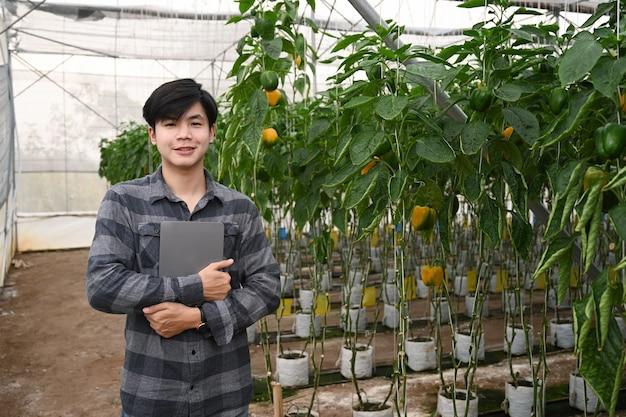 Młody azjatycki mężczyzna inteligentny rolnik trzymający cyfrowy tablet i stojący w pobliżu słodkiej papryki w szklarni