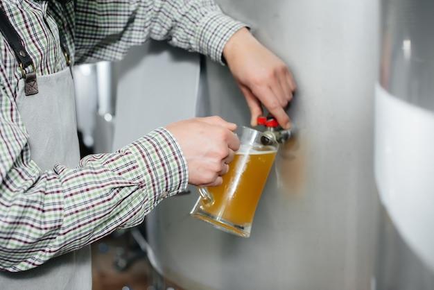 Młody brodaty piwowar przeprowadza kontrolę jakości świeżo warzonego piwa w browarze