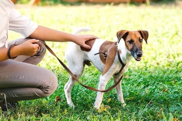 Młody chłopak z jack russel terrier na zewnątrz. facet na zielonej trawie z psem. właściciel i jego pies na smyczy w parku. przyjaźń, zwierzęta i styl życia.