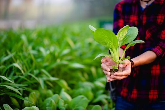 Młody człowiek i jego ogród sałatkowy i jego szczęśliwy uśmiech
