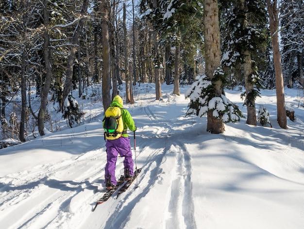 Młody człowiek na nartach na splitboard i wspinaczka do lasu w słoneczny zimowy dzień