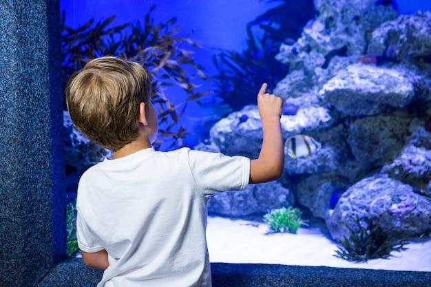 Młody człowiek wskazuje kamień w zbiorniku