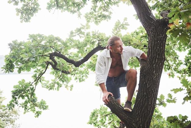 Młody człowiek wspiął się na drzewo w lesie, żeby się rozejrzeć i znaleźć właściwą ścieżkę. sposób życia w podróży i przyroda z przyrodą