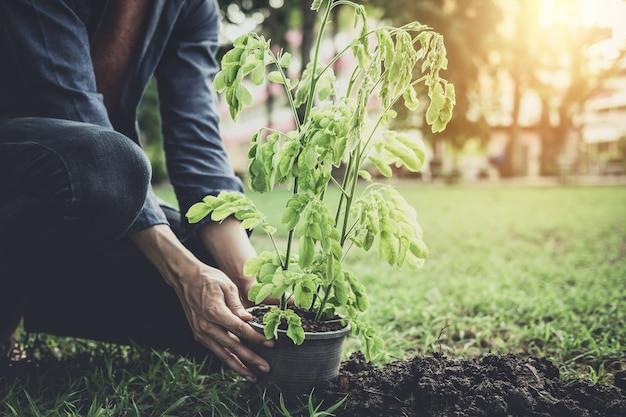 Młody człowiek zasadza drzewa w ogródzie jako dzień ziemi i save światu pojęcie