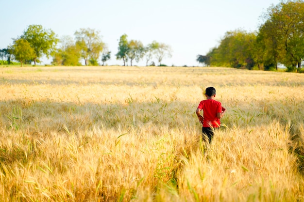 Młody indyjski dziecko bawić się przy pszenicznym polem, wiejski ind