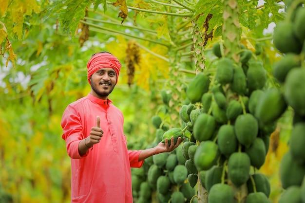 Młody indyjski rolnik na polu papai