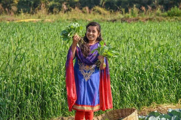 Młody indyjski rolnik pracujący w polu farmy kapusty.