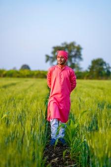 Młody indyjski rolnik spaceru na zielonym polu pszenicy