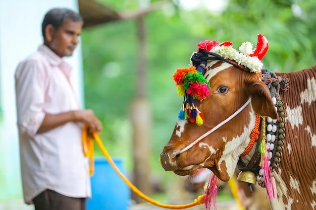 Młody indyjski rolnik świętuje festiwal pola