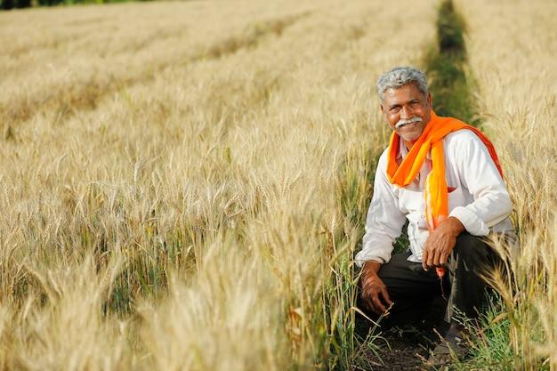 Młody indyjski rolnik w jego pszenicznym polu