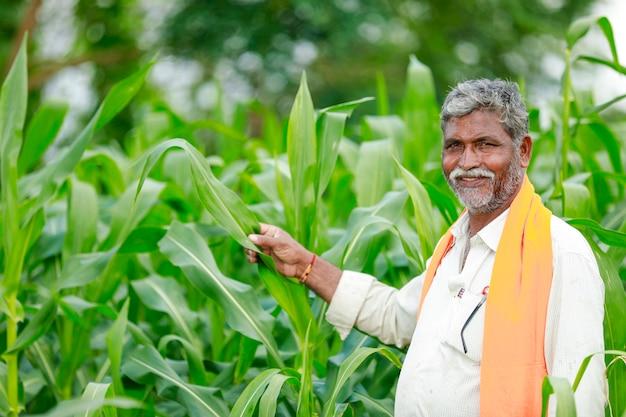 Młody indyjski rolnik w polu kukurydzy