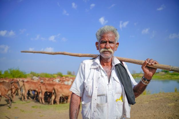 Młody indyjski rolnik z jego bydłem