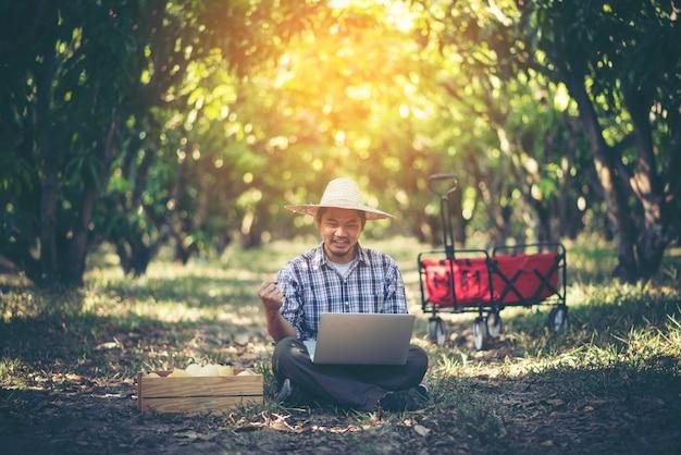 Młody mądrze rolnik pracuje z pastylką w mangowym sadzie, rolniczy bisiness pojęcie