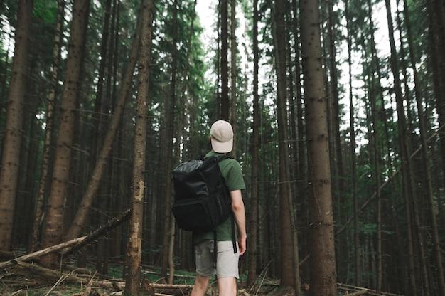 Młody mężczyzna podróżnik z plecakiem i czapką, chodzenie w lasach iglastych, ciesząc się widokiem