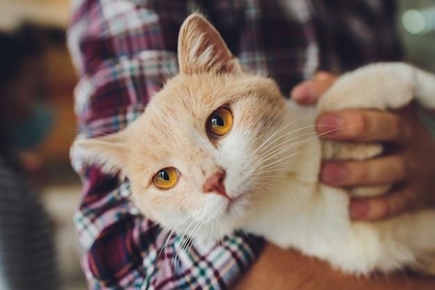 Młody mężczyzna trzyma kota w ramionach.
