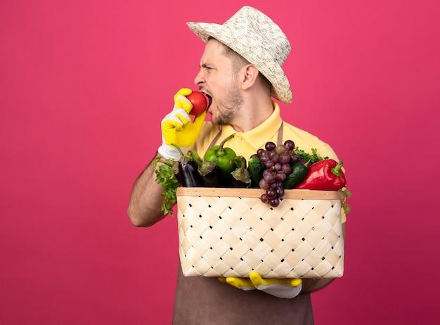 Młody ogrodnik człowiek ubrany w kombinezon i kapelusz w rękawicach roboczych, trzymając skrzynię pełną warzyw gryzienie świeżego pomidora