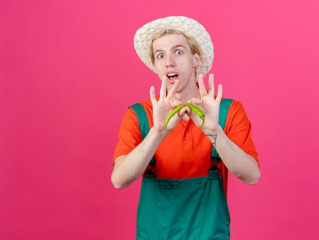 Młody ogrodnik mężczyzna ubrany w kombinezon i kapelusz trzymając zieloną paprykę chili, łamanie go