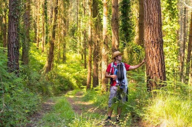 Młody ojciec w kapeluszu i z synem w plecaku i patrzący na sosny w lesie