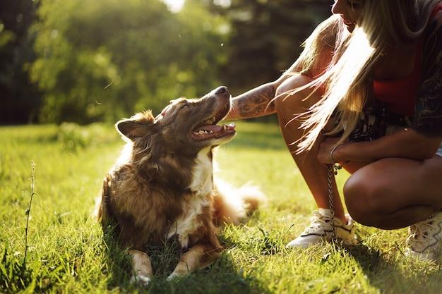Młody pies rasy border collie na smyczy w parku