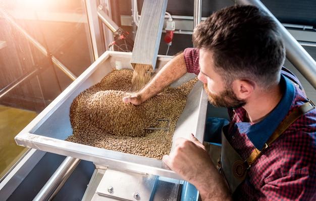 Młody piwowar w skórzanym fartuchu kontroluje mielenie ziaren słodu w młynku w nowoczesnym browarze