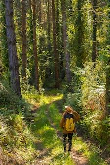 Młody poszukiwacz przygód z kapeluszem w leśnych sosnach