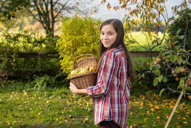 Młody pre nastolatek podnosi jabłka w ogródzie