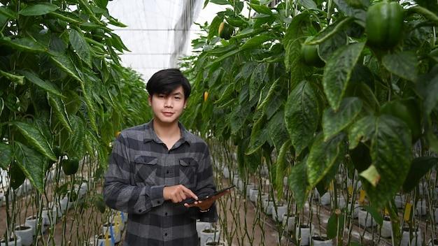 Młody rolnik ekologiczny asianmale za pomocą cyfrowego tabletu wewnątrz farmy roślin rolniczych.