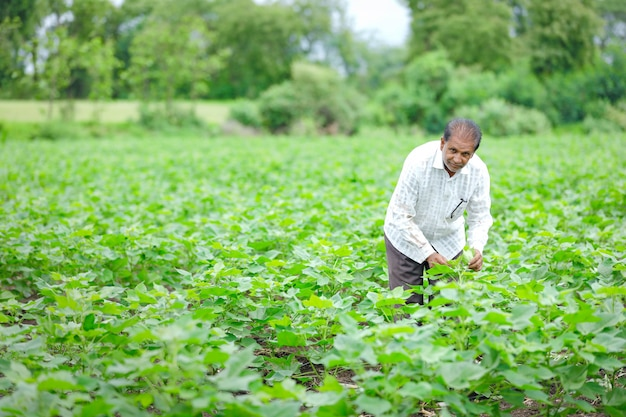 Młody rolnik indyjski w dziedzinie