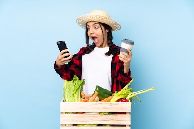 Młody rolnik kobieta trzymająca świeże warzywa w drewnianym koszu z kawą na wynos i telefon komórkowy