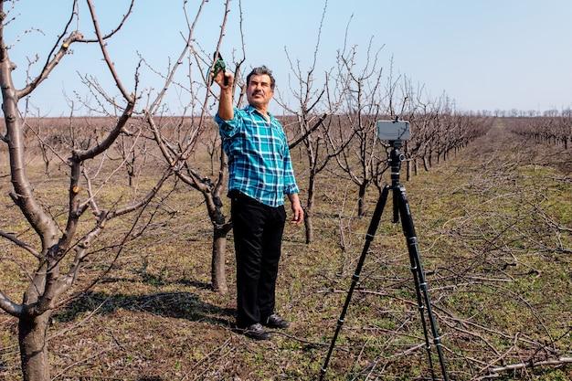 Młody rolnik przycinanie drzew owocowych na wiosnę. blogger influencer nagrywający blog wideo