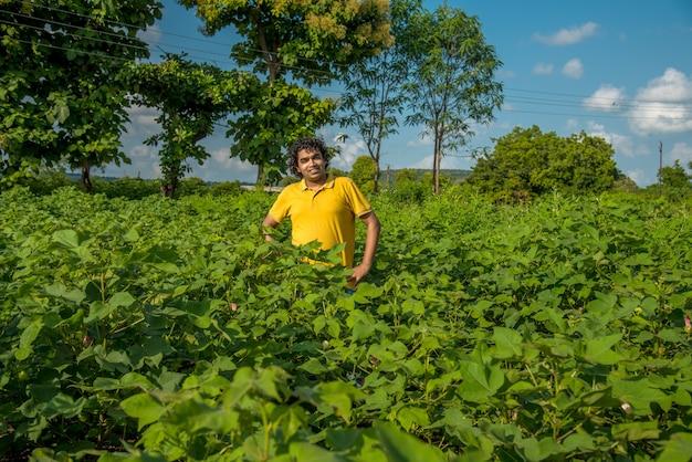 Młody rolnik w gospodarstwie bawełny bada i obserwuje pole.