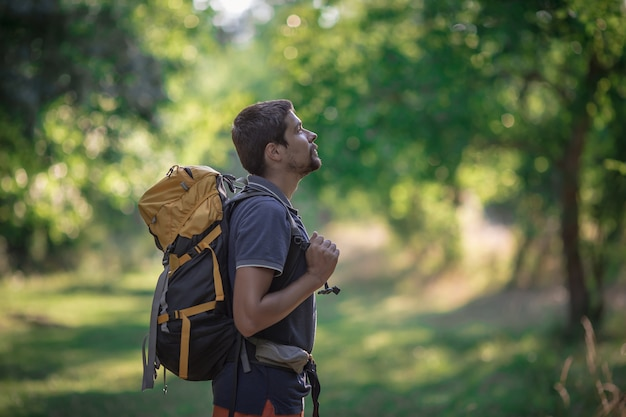 Młody uśmiechnięty plecaka mężczyzna w lato lasu naturze. szczęśliwy przystojny męski dorosły uczeń patrzeje kamery odprowadzenie wycieczkuje w lasowym tle. tornister szkolny lub koncepcja podróży z plecakiem.