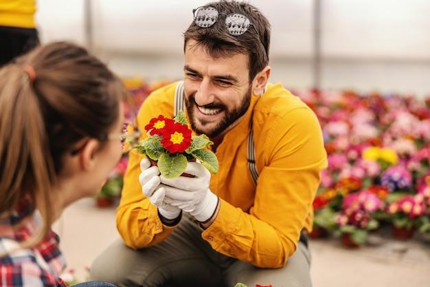Młody uśmiechnięty pracownik ogrodnika w przedszkolu trzyma garnek z kwiatami i flirtuje z kolegą, który jest również jego dziewczyną.