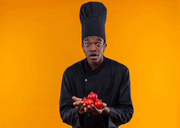 Młody zaskoczony kucharz afro-amerykański w mundurze szefa kuchni trzyma pomidory obiema rękami odizolowanymi na pomarańczowej ścianie