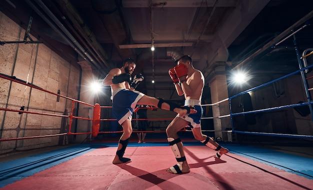 Młodzi bokserzy trenujący na ringu