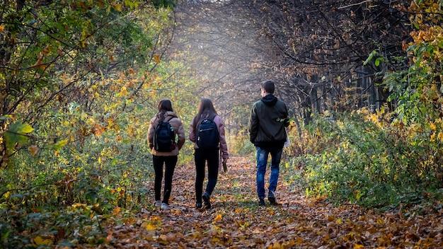 Młodzi ludzie chodzą w lesie jesienią