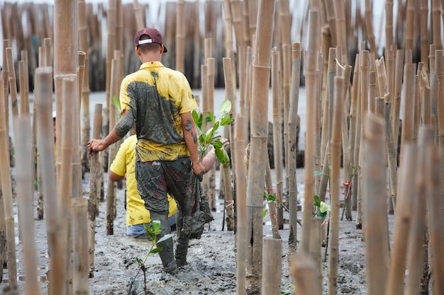 Młodzi ochotnicy sadzący drzewa namorzynowe w ramach ponownego zalesiania