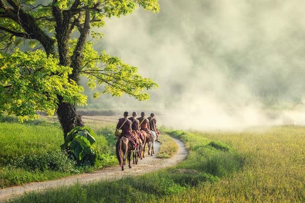 Mnich buddyjski z brązową szatą jeździ konno i prosi o jałmużnę (niewidoczne w tajlandii), drzewo obok drogi, którą ludzie jadą na koniach na wsi w chiangrai, tajlandia